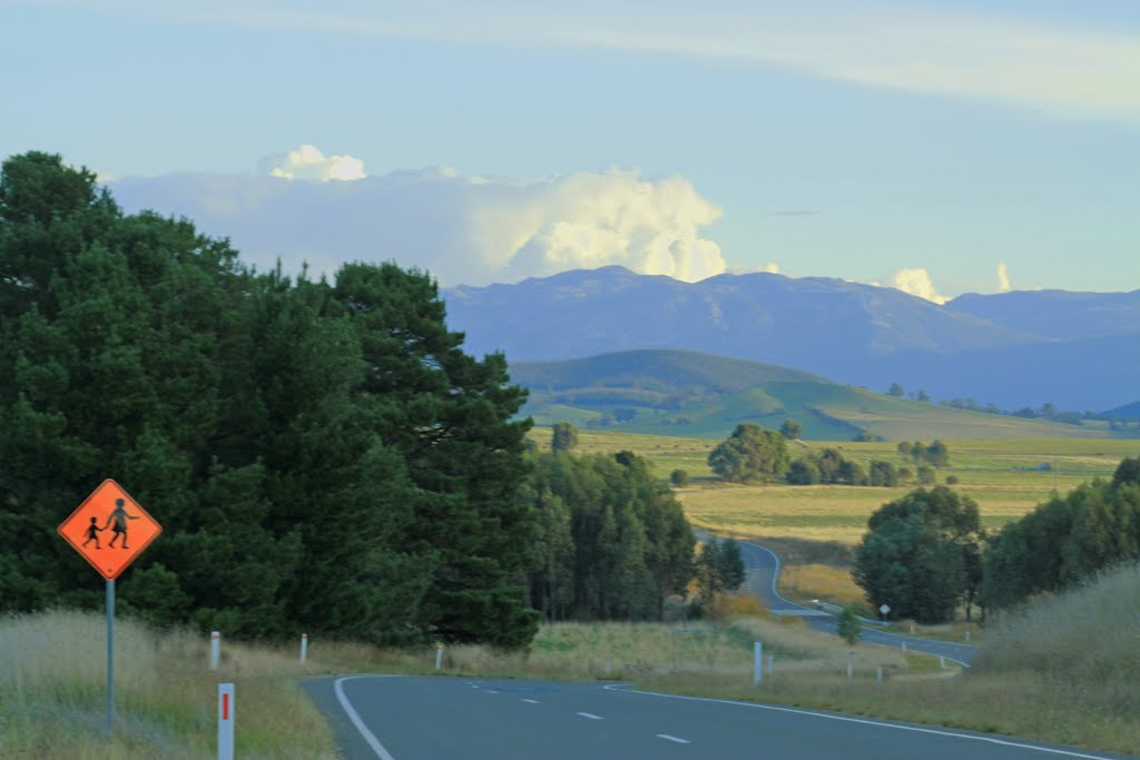 Along Myrtleford-Yackandandah Rd
