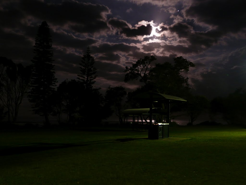 Moonlight in the Park