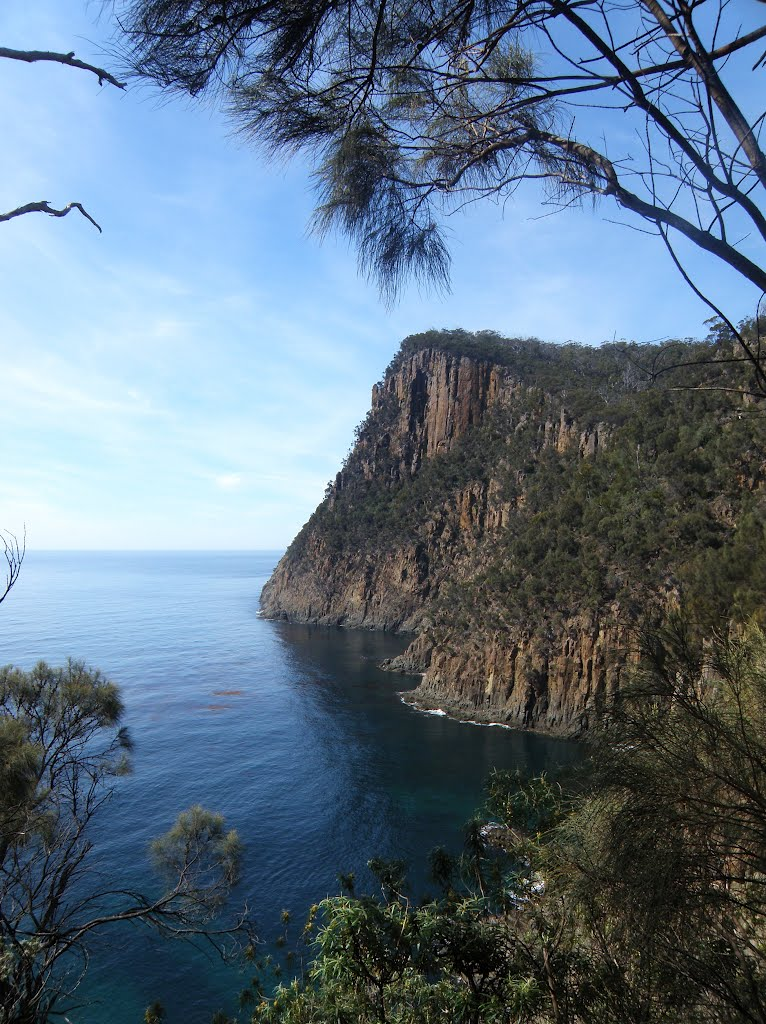Walking the clifftops to Fluted Cape....Bruny Island