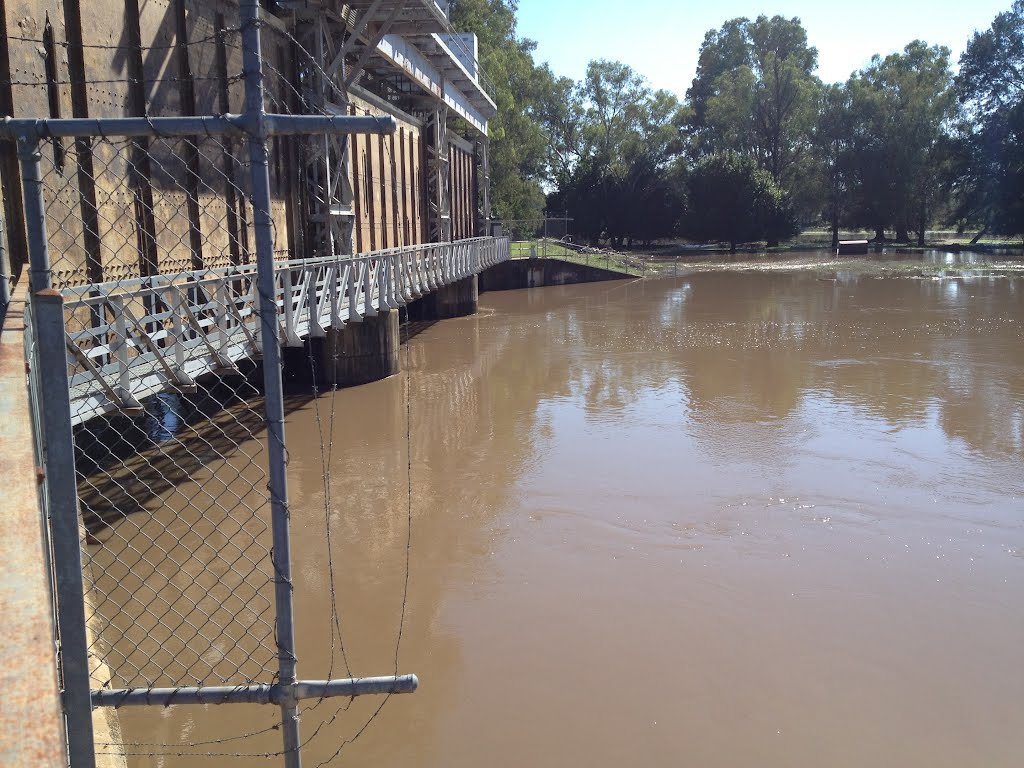 U/S Jemalong Weir all gates opend during March 2012 Floods NSW
