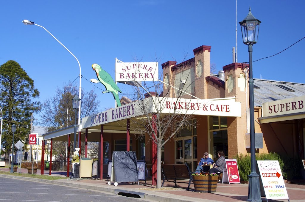 Bakery named after the Superb Parrot, local to this area