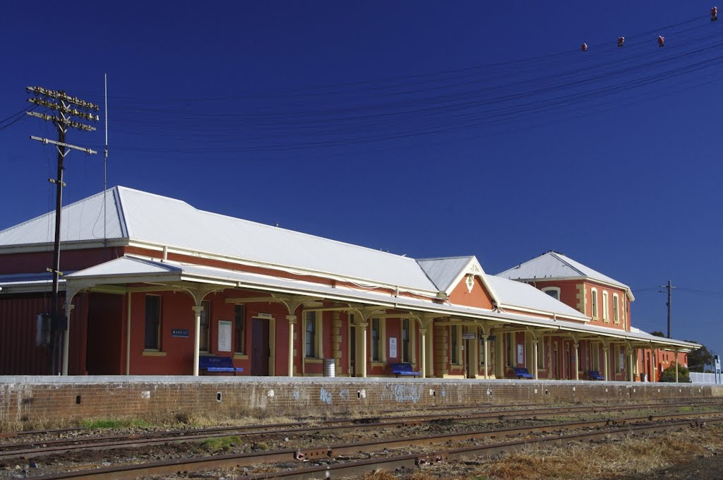 Harden Railway Station with pink Galahs