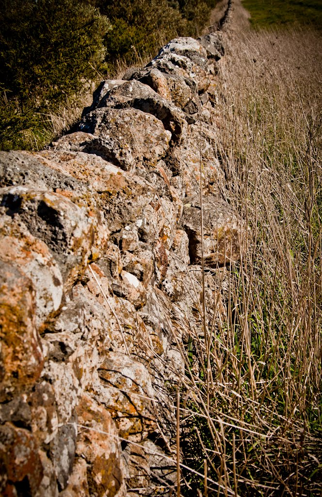Dry Stacked-stone Wall