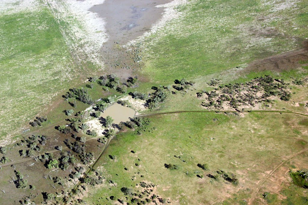 Water Conservation for Cattle Grazing, Balonne River Country, Queensland