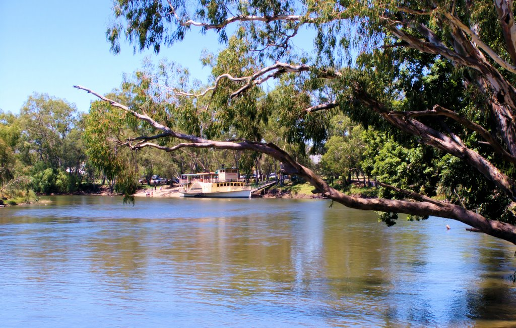 Murray River peacefulness