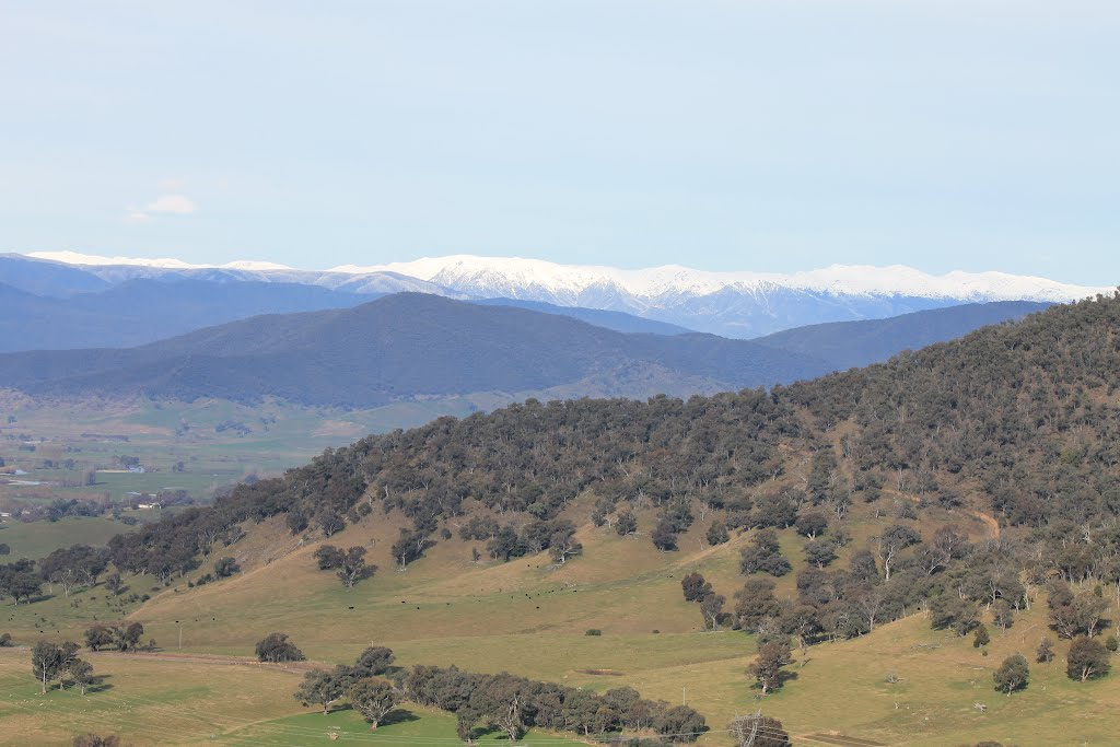Snowy Mountains from Towong Hill