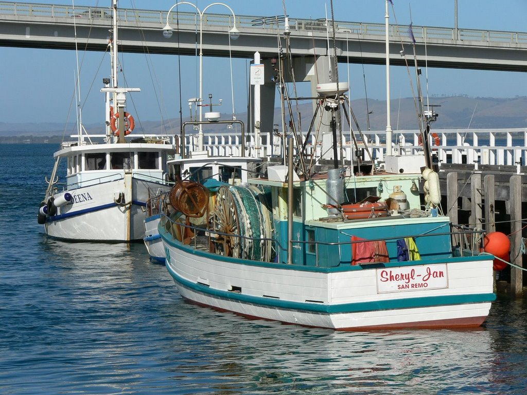 Fishing boats at San Remo