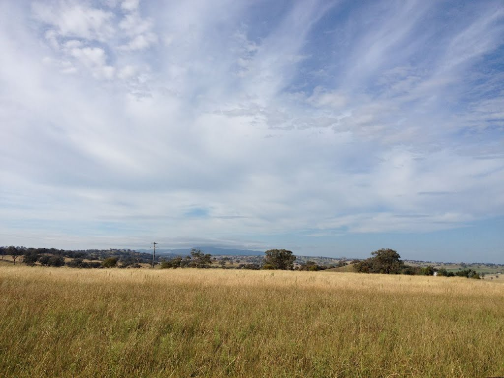 This is a typical Molong skyscape!