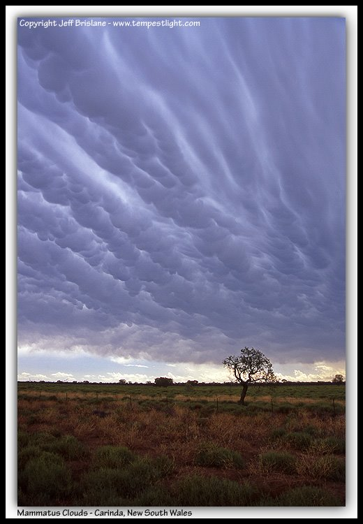 Awesome Mammatus Clouds near Carinda, New South Wales