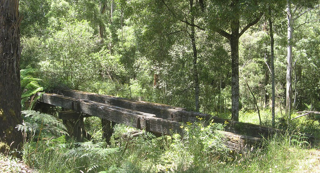 Former timber bridge on the Old Beechy Rail Rail