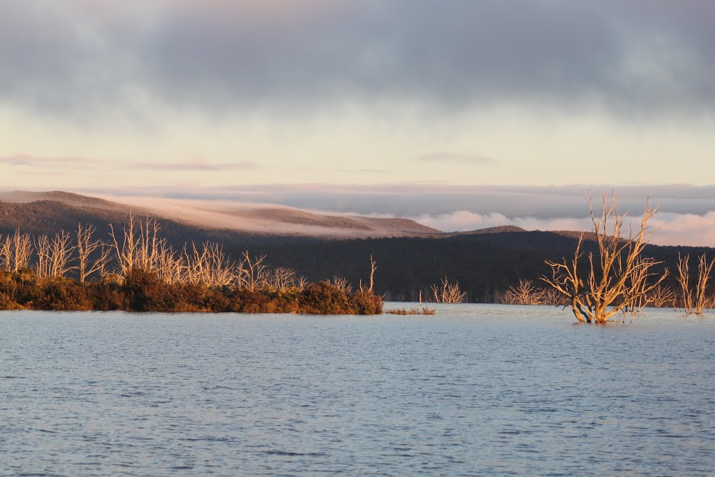 Early Morning on Arthurs Lake