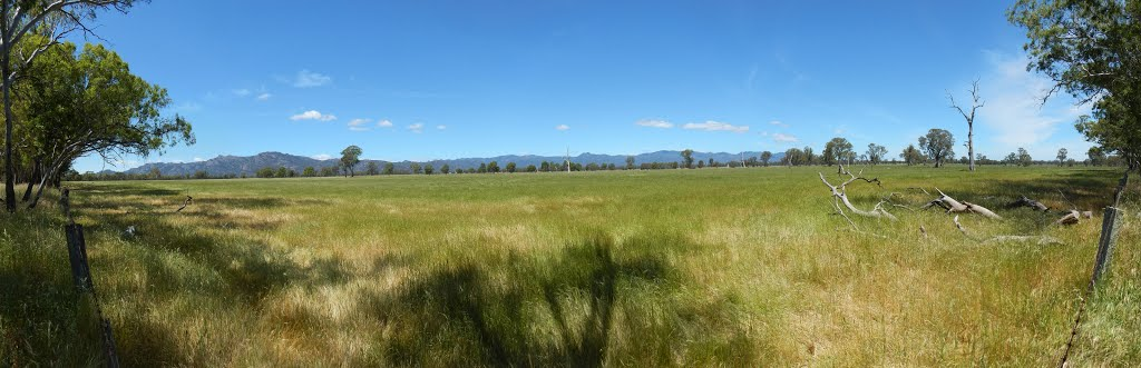 grampians panorama from the henty highway