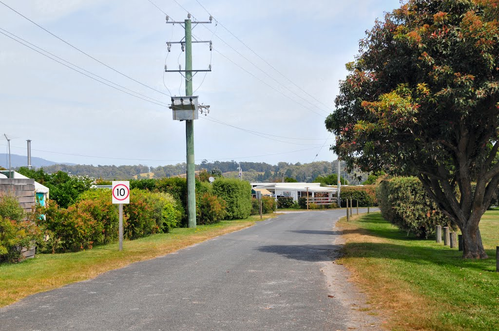 Main access road in Badger Head Caravan Park