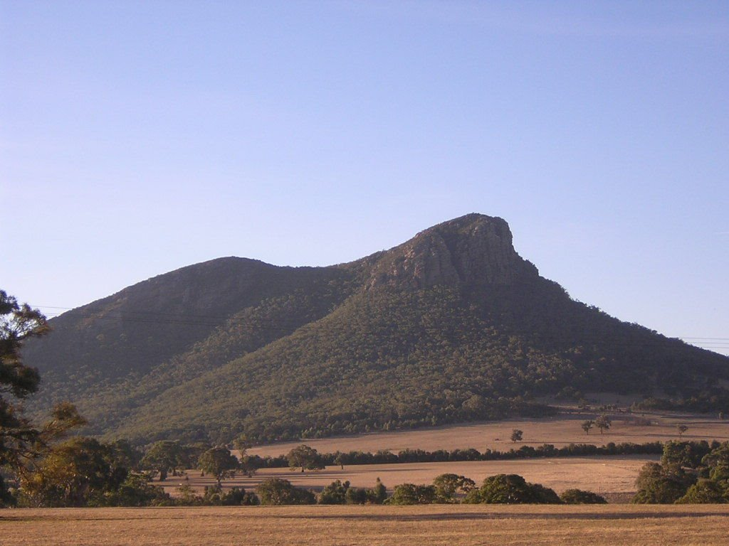 Mt Surgeon (view from the road)