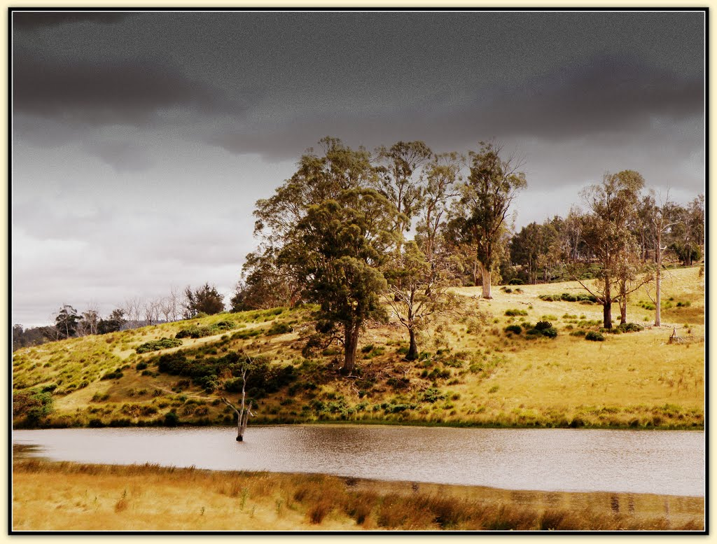 ....rolling hills around Ouse, Tasmania
