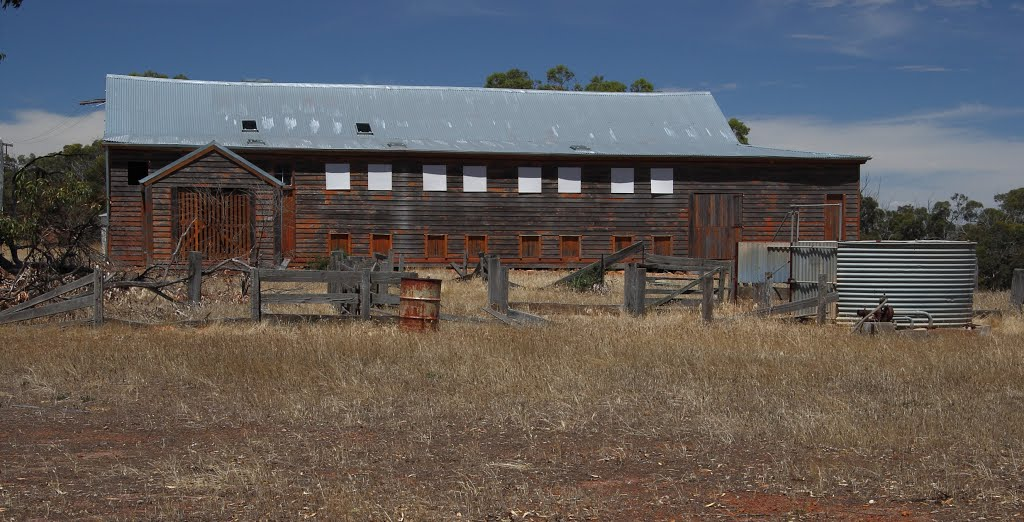 Old shearing shed at Arthur River..west aspect.