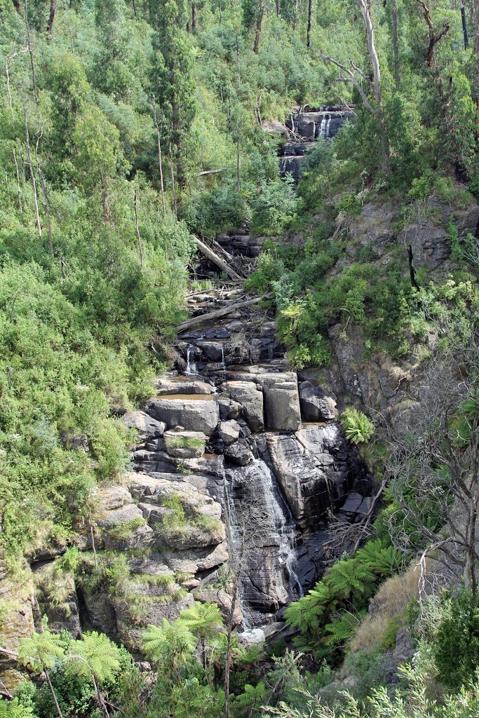 Masons falls - Kinglake National park