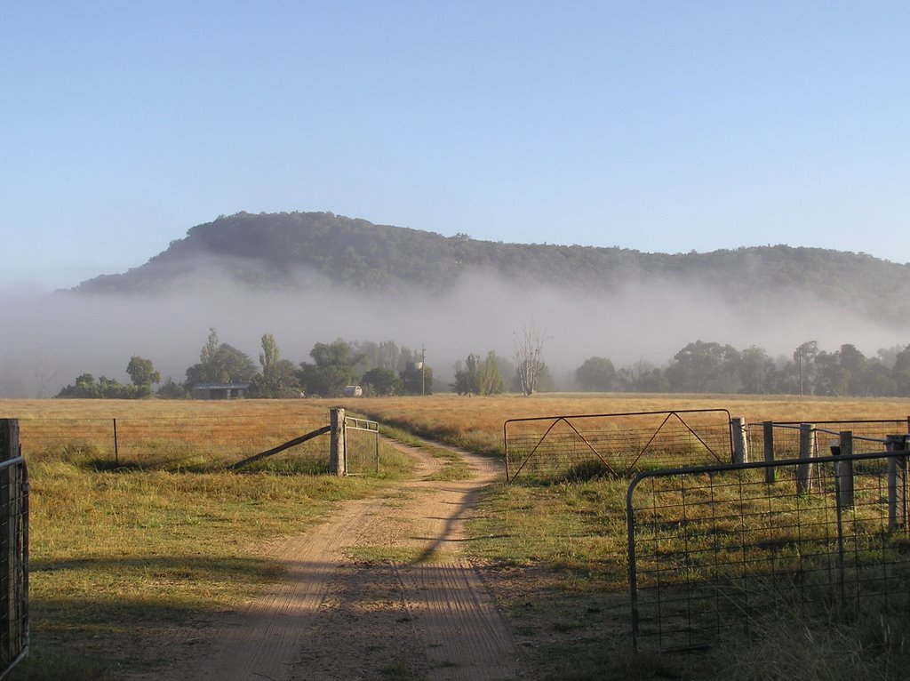 Morning Fog over the Farm