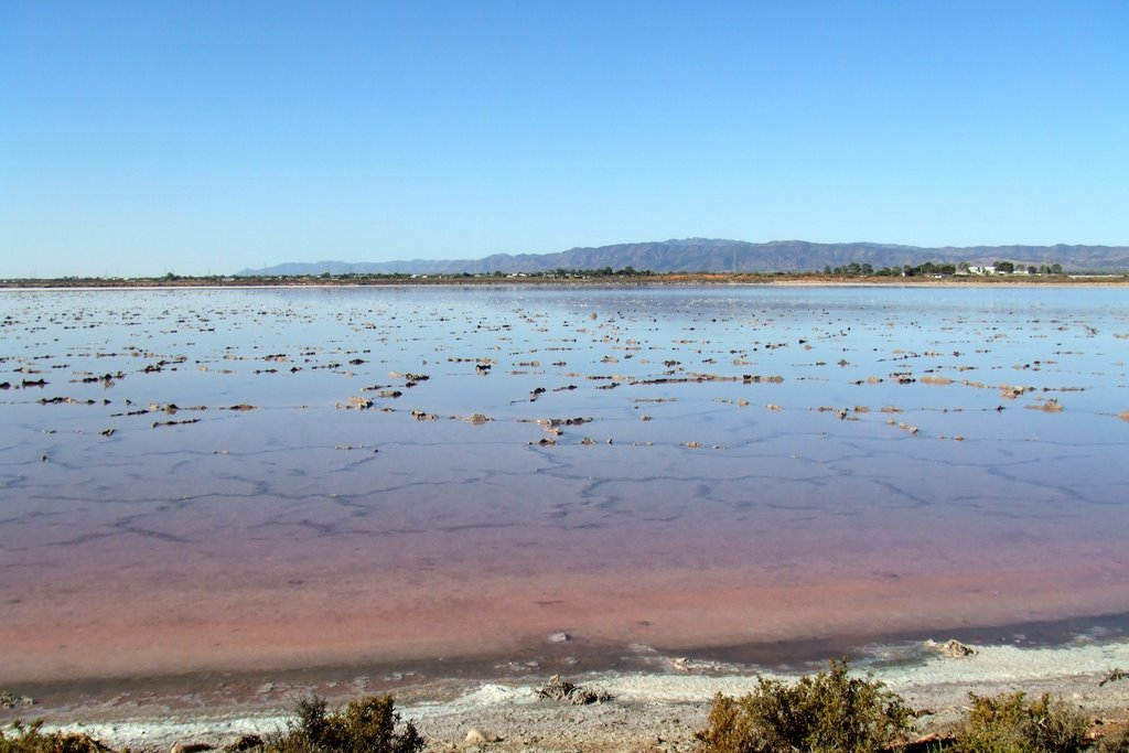Salt Flats - Port Augusta, South Australia