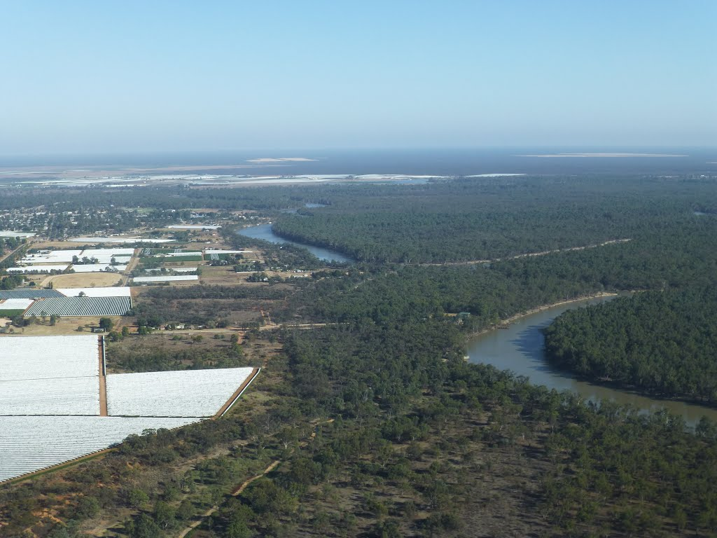 Aerial View of Robinvale and the Murray River