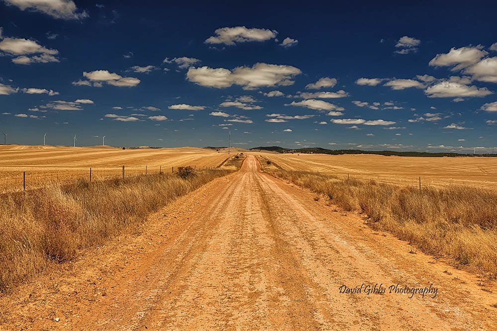 long road by David Gibbs