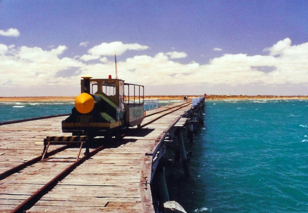 little bugger on the Carnarvon jetty, 2003