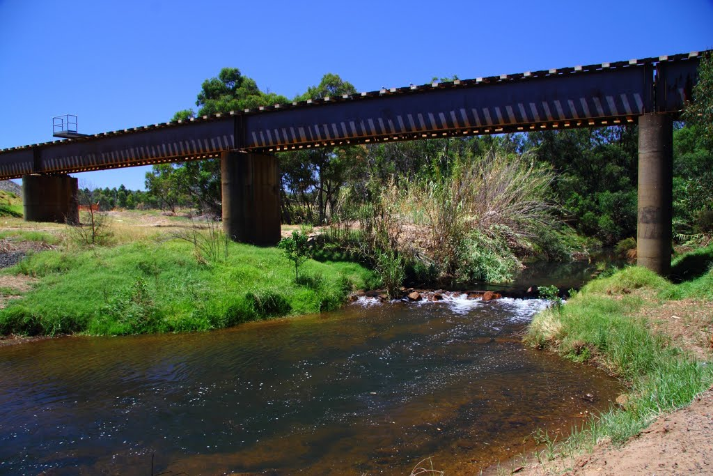 Railway bridge over Collie River.