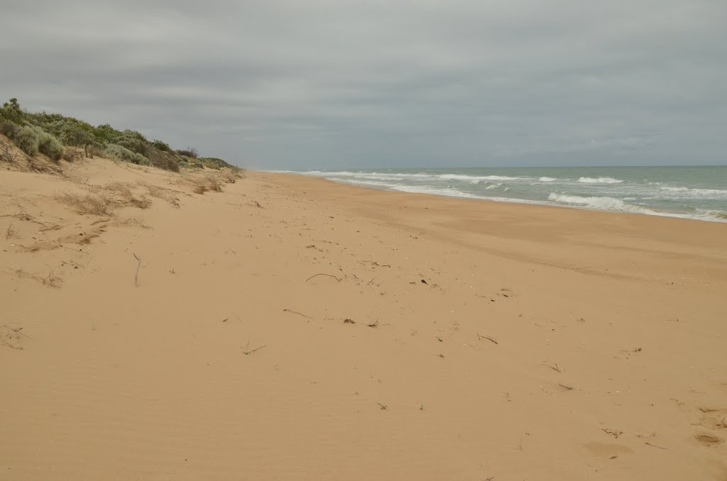 The Ninety Miles Beach (Australie)