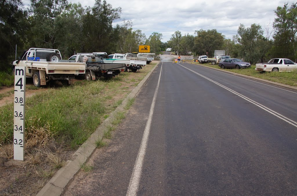 Waiting for the flood to subside - Condamine River flood, Condamine (8 March 2013)