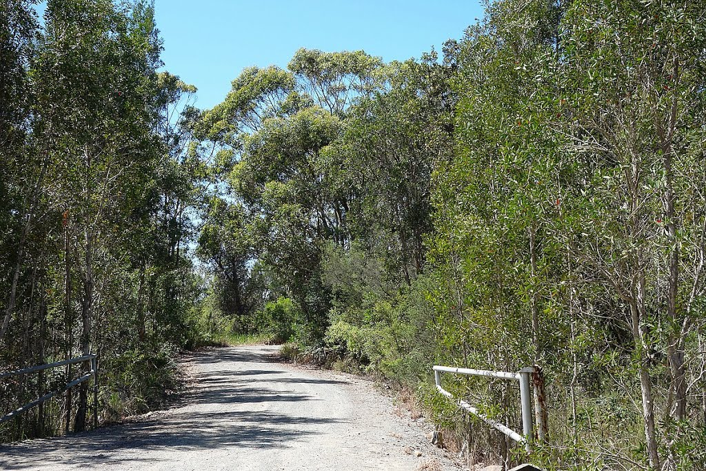 Track at Crowdy Bay National Park