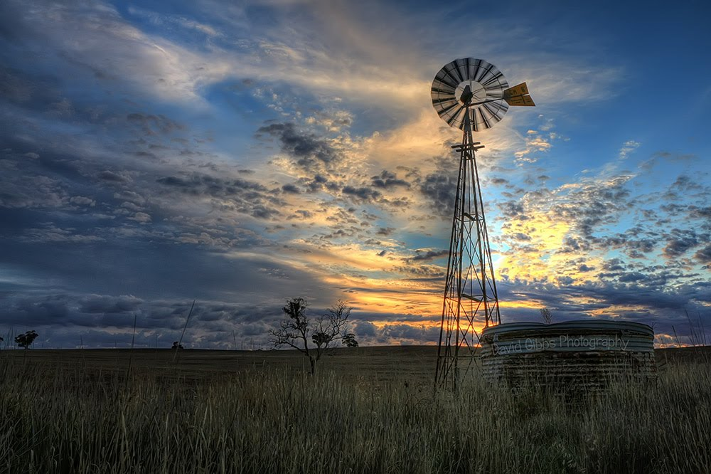 Windmill sunrise by David Gibbs