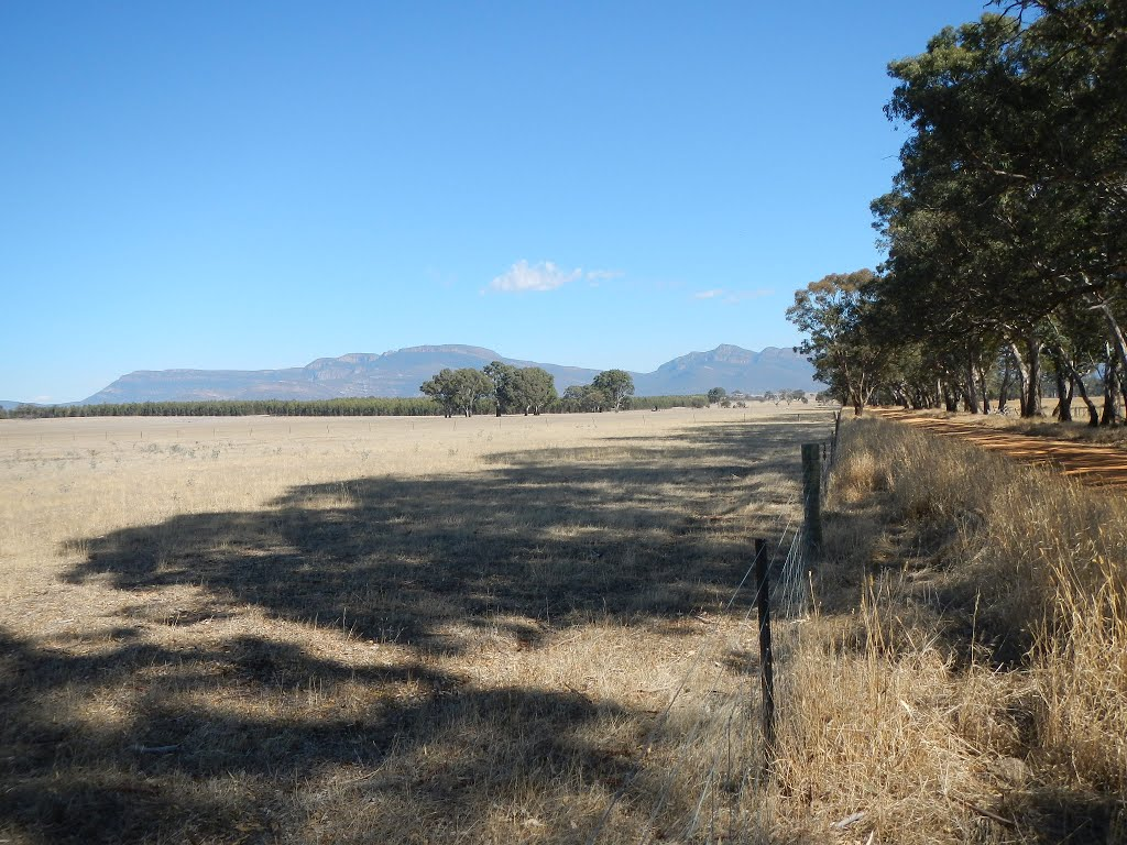 grampians from redman road