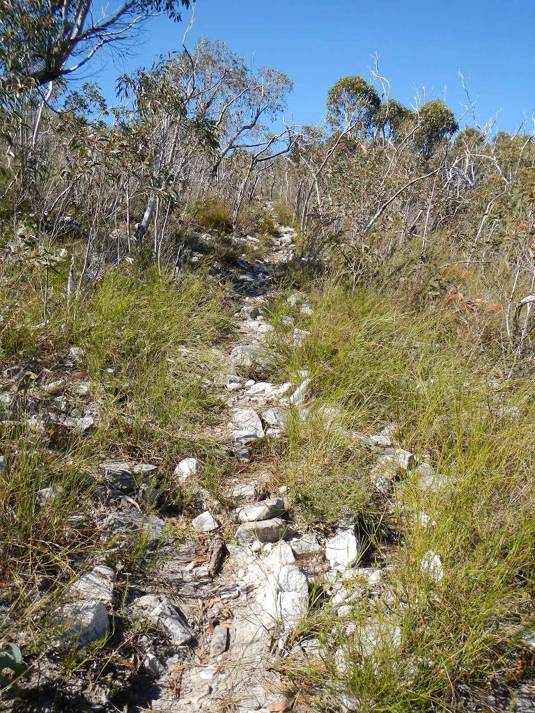 heading down towards jimmy creek on the major mitchell plateau track