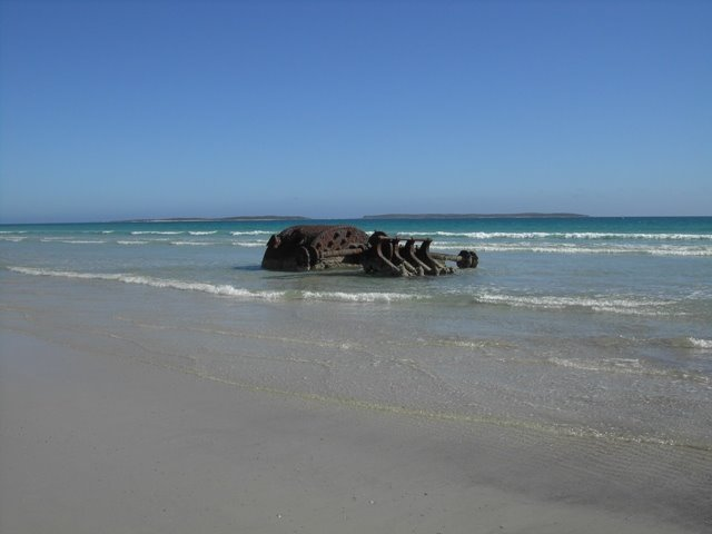 Shannon Wreck