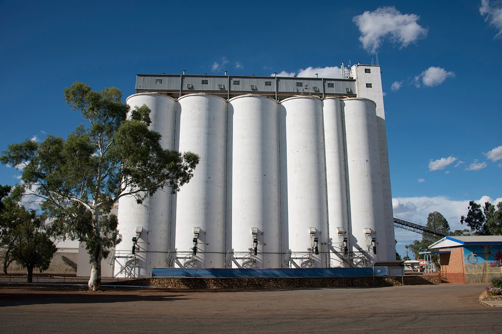 Three Springs grain silos