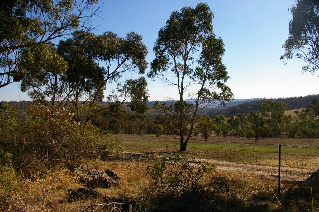 View towards Para Wirra Recreation Park from Bassnet Road